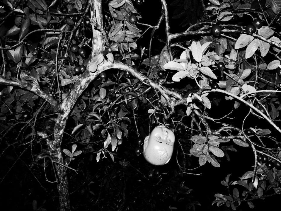 black & white, contrast photography by Aji Susanto Anom