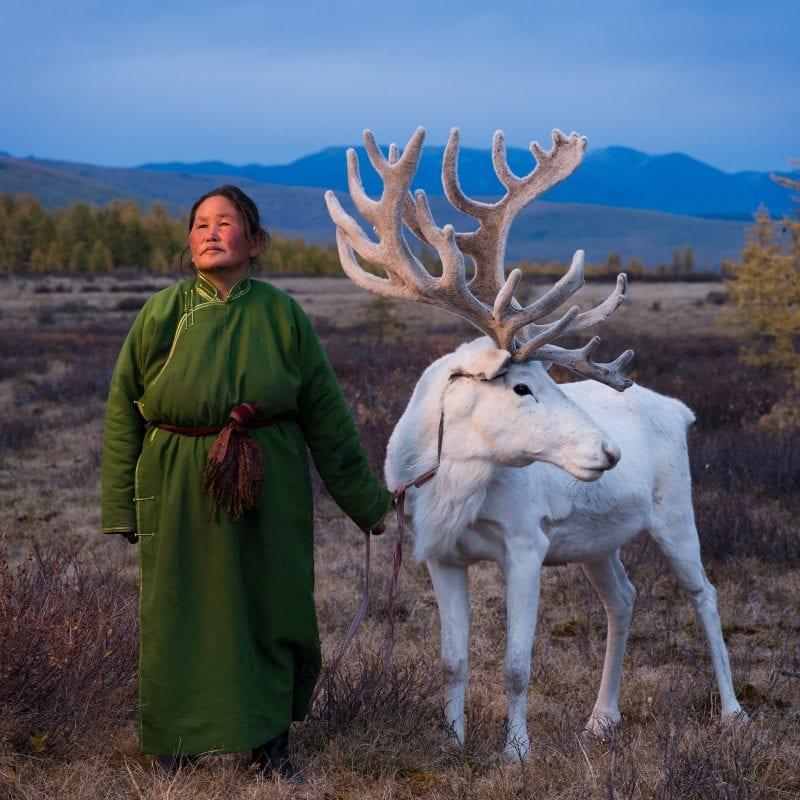 蒙古的查桑人,池上小圆的摄影系列,驯鹿牧民