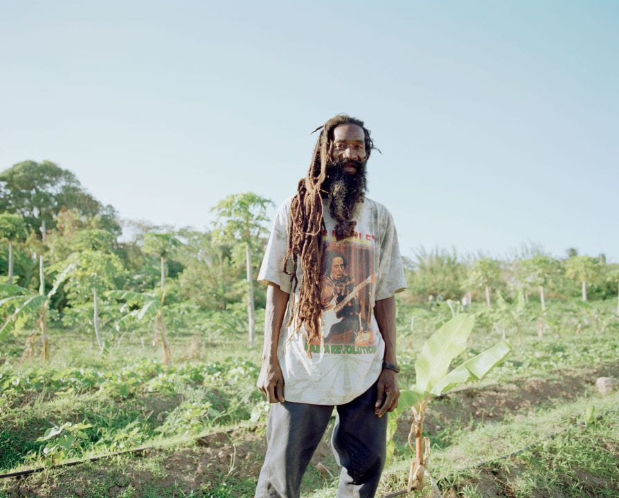 man gardening color portrait photography in the Caribbean island of Nevis, by Catherine Hyland