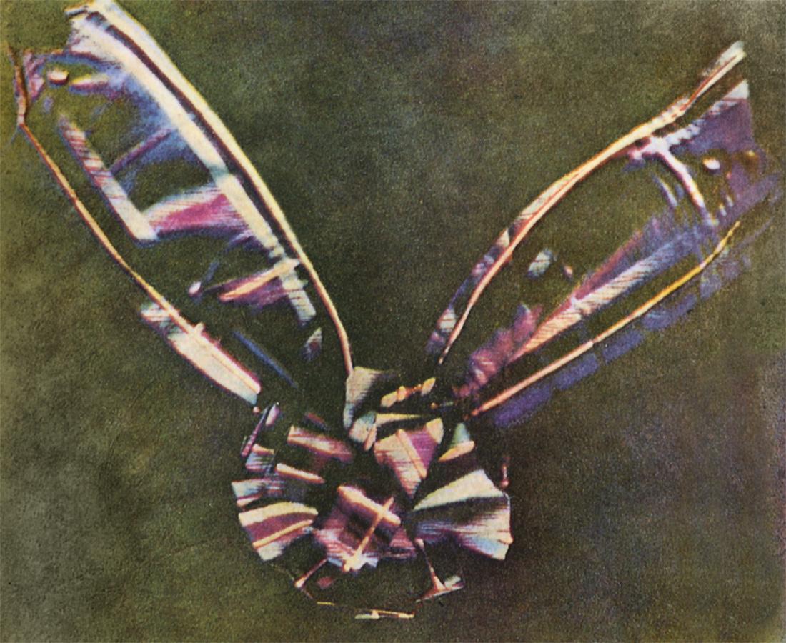 Tartan Ribbon, 1861 Foto von Thomas Sutton & James Clerk Maxwell