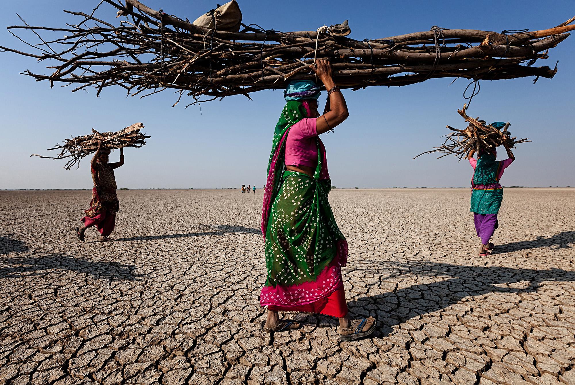 Fotografia documentaria a colori di Johan Gerrits di donne che trasportano legna da ardere in India
