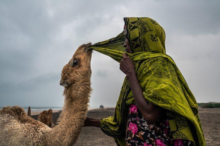 Fotografía en color, mujer y camello, Somalia por Nichole Sobecki