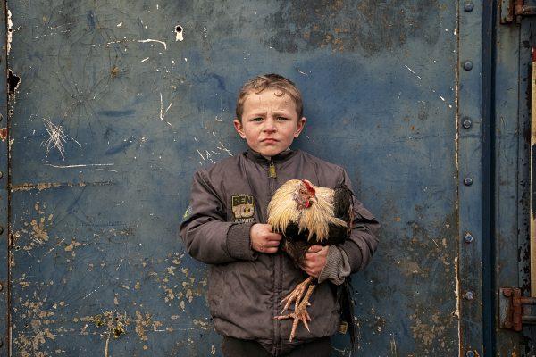 一个年轻的爱尔兰旅行男孩和他的公鸡的彩色肖像,鲍勃纽曼