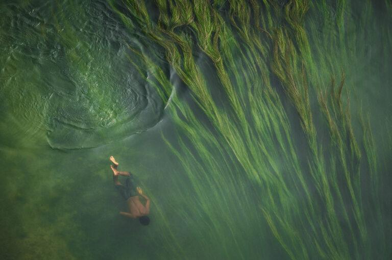Foto eines kleinen Jungen, der in Bangladesch im Wasser voller Süßwasseralgen schwimmt von Anindita Roy